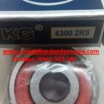 6300 2rs kg