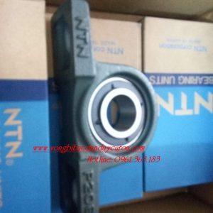 GỐI ĐỠ UCP205-P205 - NTN